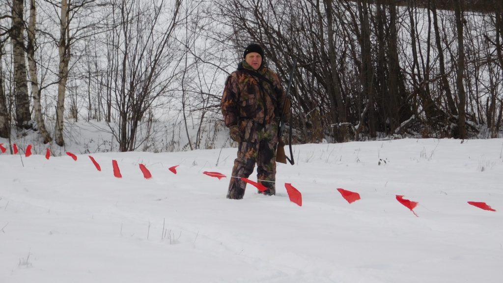 О снижении численности волка в Кировской области