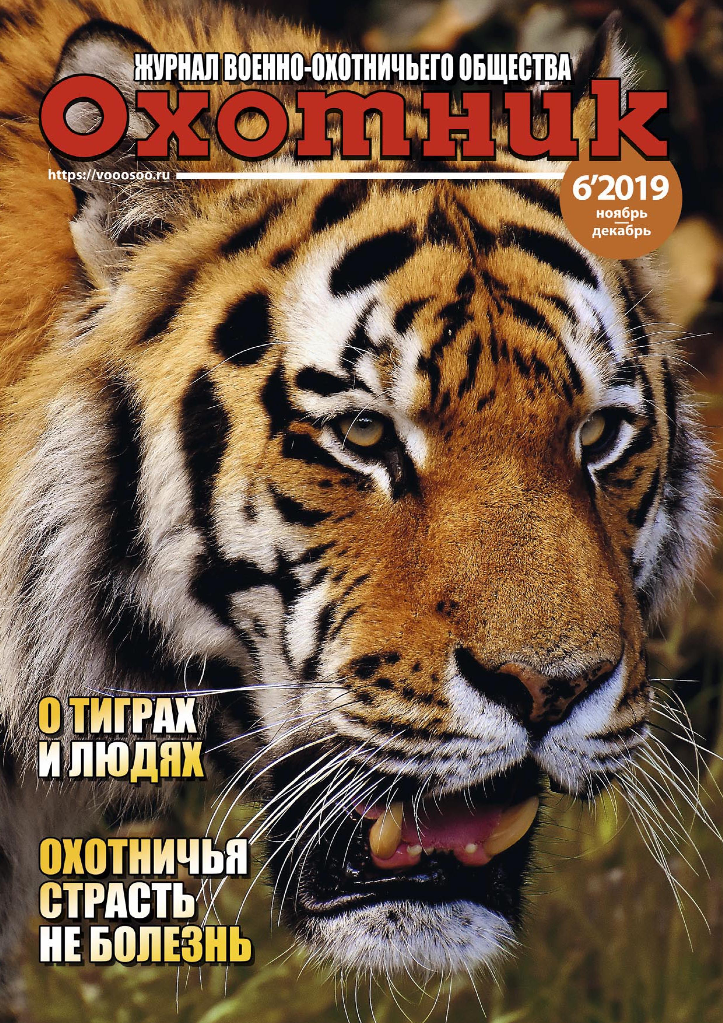 Выпуск № 6'19 (ноябрь — декабрь)