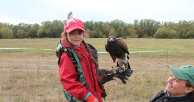 Всероссийские соревнования охотников с ловчими птицами «СЛЕТ СОКОЛЬНИКОВ — 2020» прошли в Липецкой области