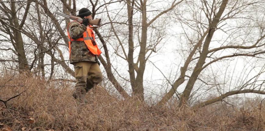 Вступили в силу новые правила для охотников. На что обратить внимание?