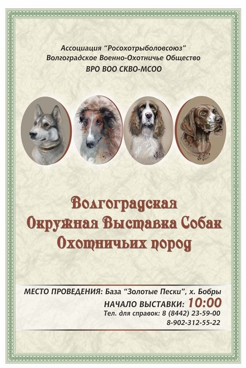Волгоградская Окружная выставка собак приглашает