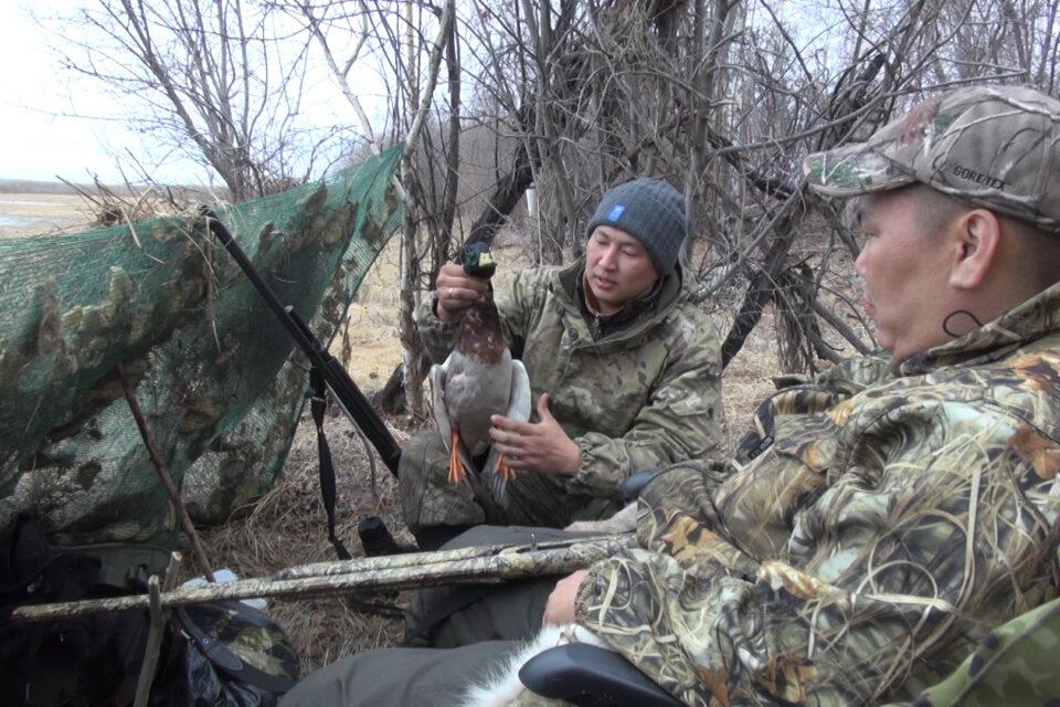 Что необходимо знать охотнику в Якутии