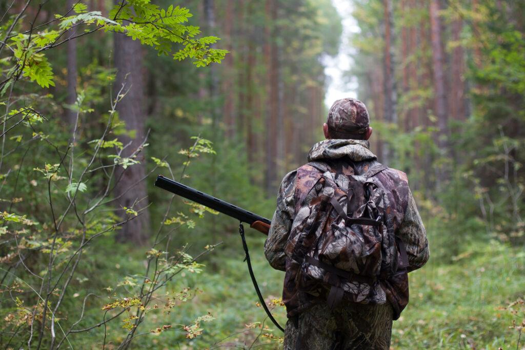 Охотники подошли на расстояние выстрела
